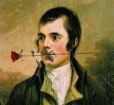 Robert Burns and a Rose